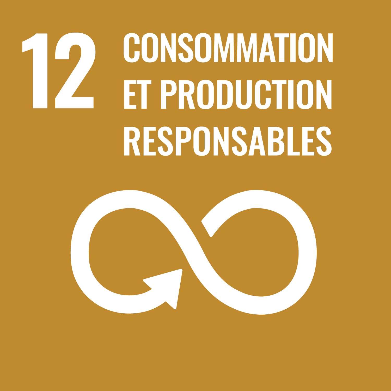 SDG'S Gosl12 つくる責任つかう責任