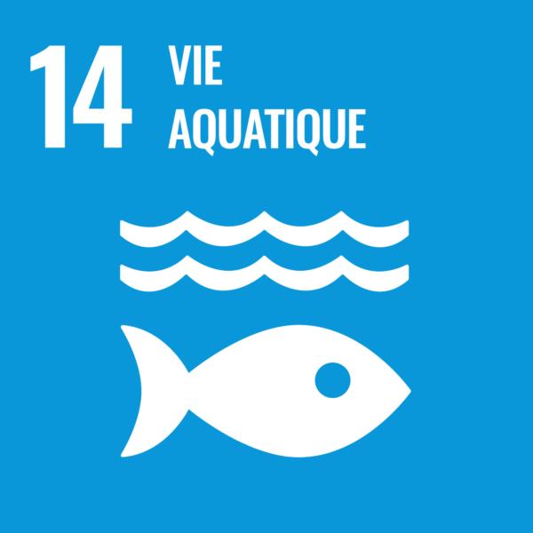SDG'SGoal14 海の豊かさを守ろう